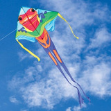 Large Easy Flyer Kite  Poison Dart Frog 46 X 90 Con 300 Pies