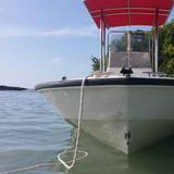 Boston Whaler, Bote, Lancha, Boat, Embarcacion